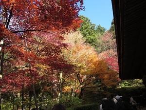 IMG_4677湖東三山金剛輪寺.jpg